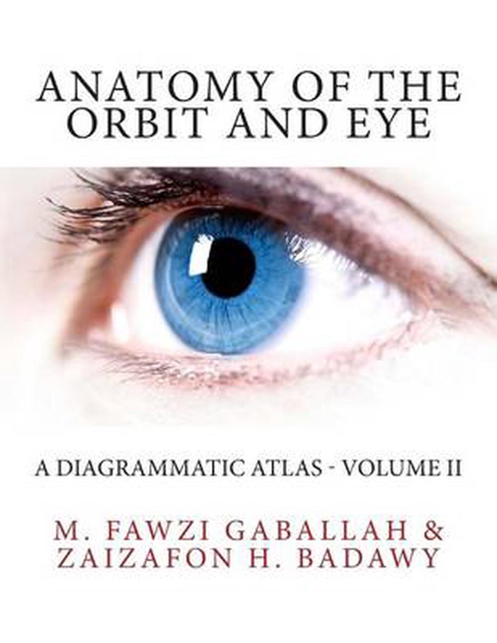 Anatomy of the Orbit and Eye: A Diagrammatic Atlas - Volume II by M ...