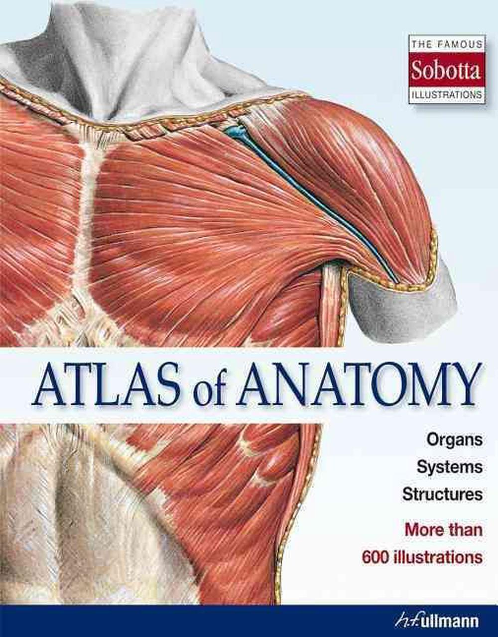 Atlas of Anatomy: The Human Body Described in 13 Systems by ...